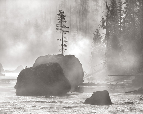 Shibui, Yellowstone National Park, 2010