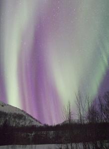 Aurora Borealis at Oldervik near Tromsø, 2006